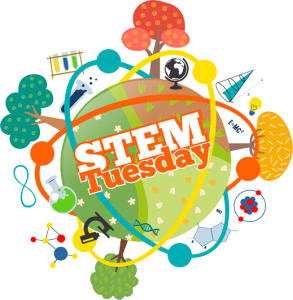STEM Tuesday Blog